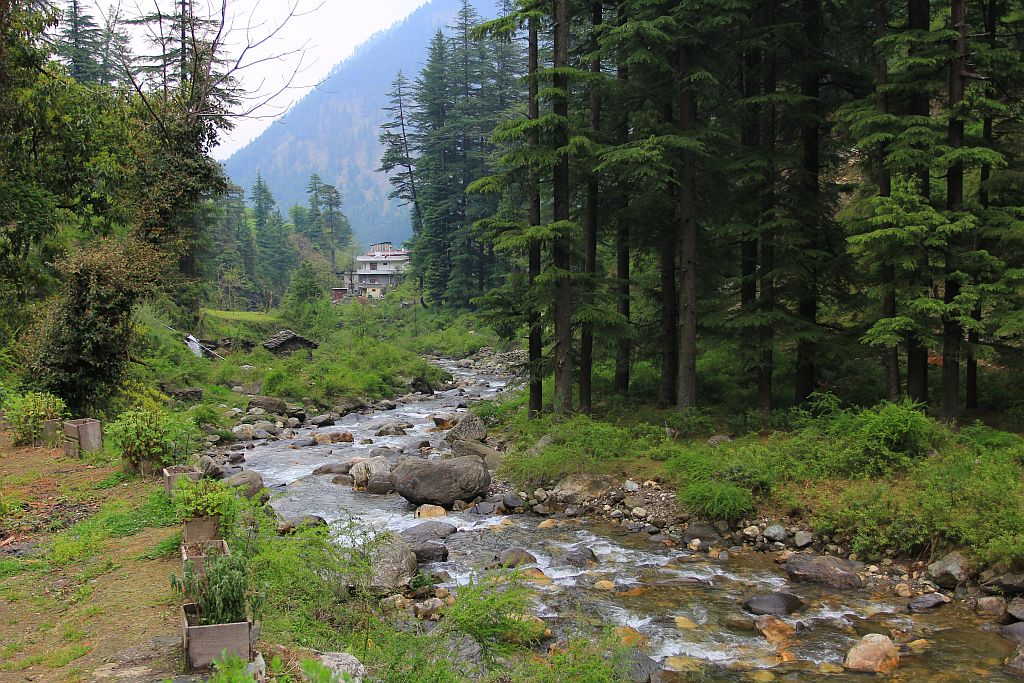 Jibhi Tour Packages
